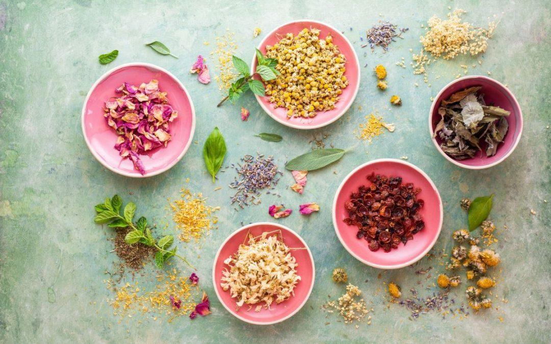 Erősítsd az immunrendszeredet természetes és csodálatos gyógynövényekből készült gyógyteákkal